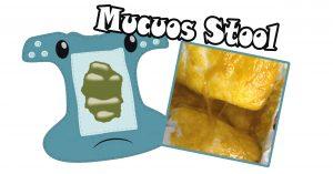 mucous stool 2